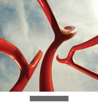 Web Design Portfolio, BERMAN LAVO LLC